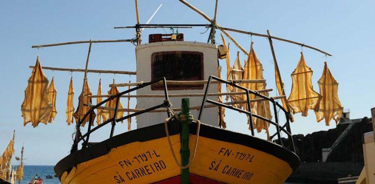 Boot mit Trockenfisch Mietwagen-Preisvergleich Madeira