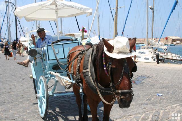 Kutsche mit Pferd auf Kreta