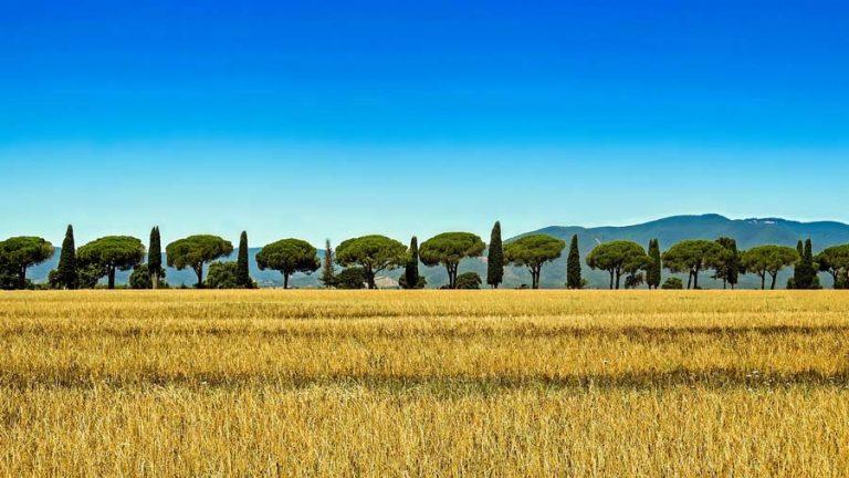 typische Landschaft in Italien