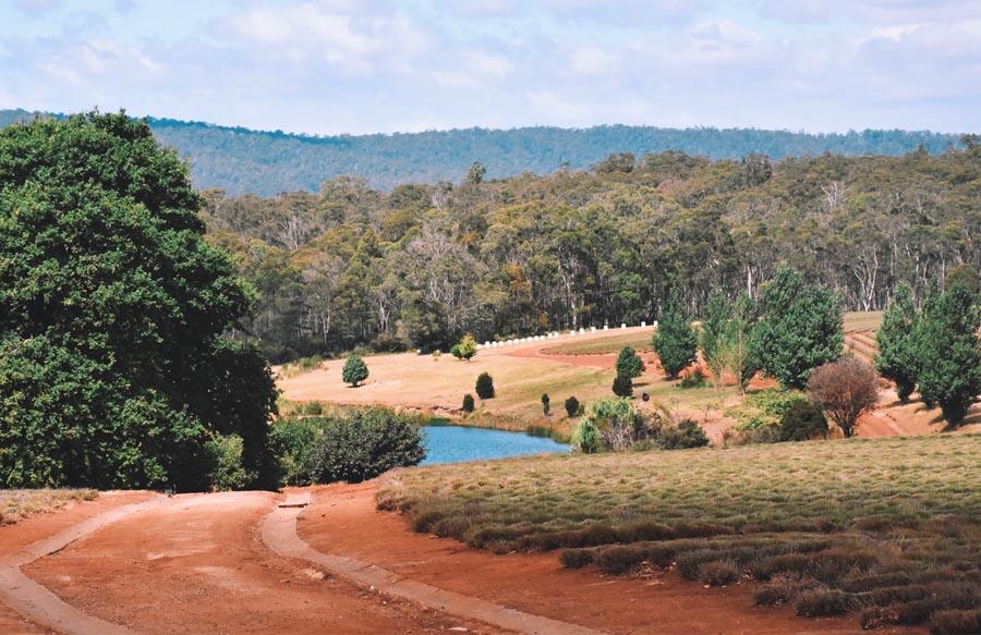 Hobart Tasmanien Strasse