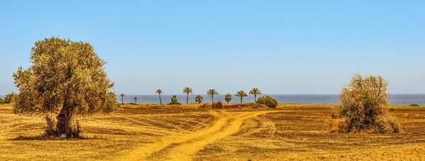 Landschaft Zypern mit abgeernteten Feldern
