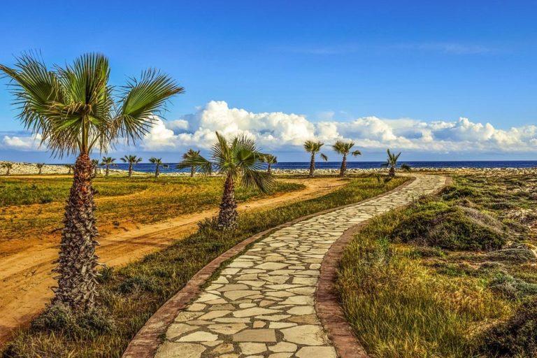 Wegn mit Palmen und Himmel au Zypern
