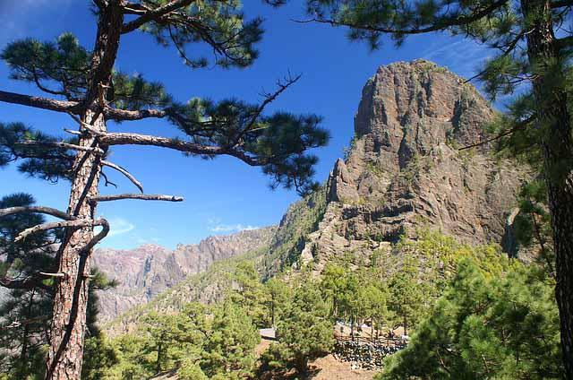 Berge mit Baeumen auf La Palma