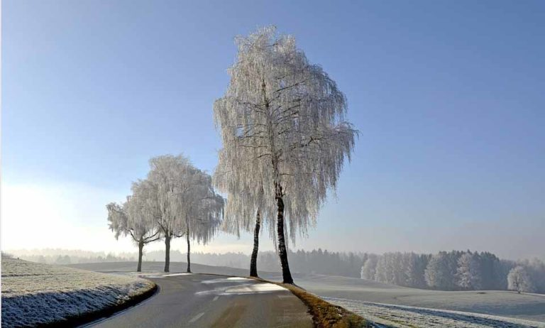 Winterreifen bei Mietwagen