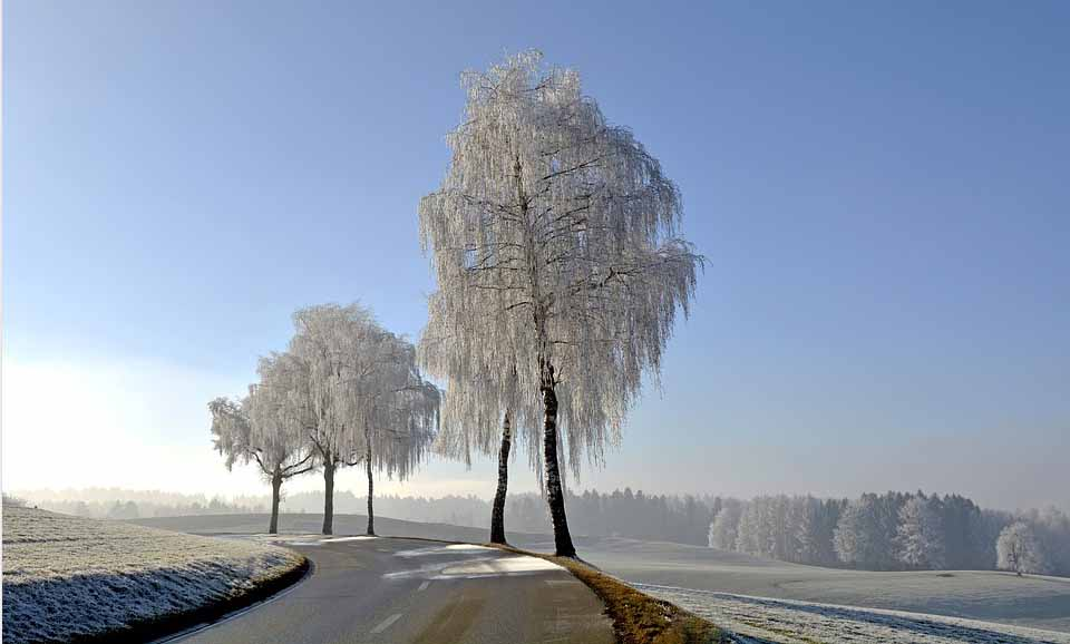 Strasse im Winter